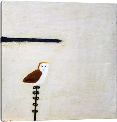Owl On A Post Canvas Art Print