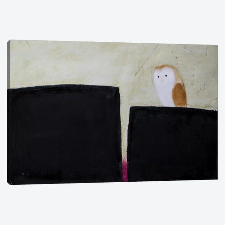 Owl On Black & Magenta Canvas Print #SQU18} by Andrew Squire Canvas Art Print