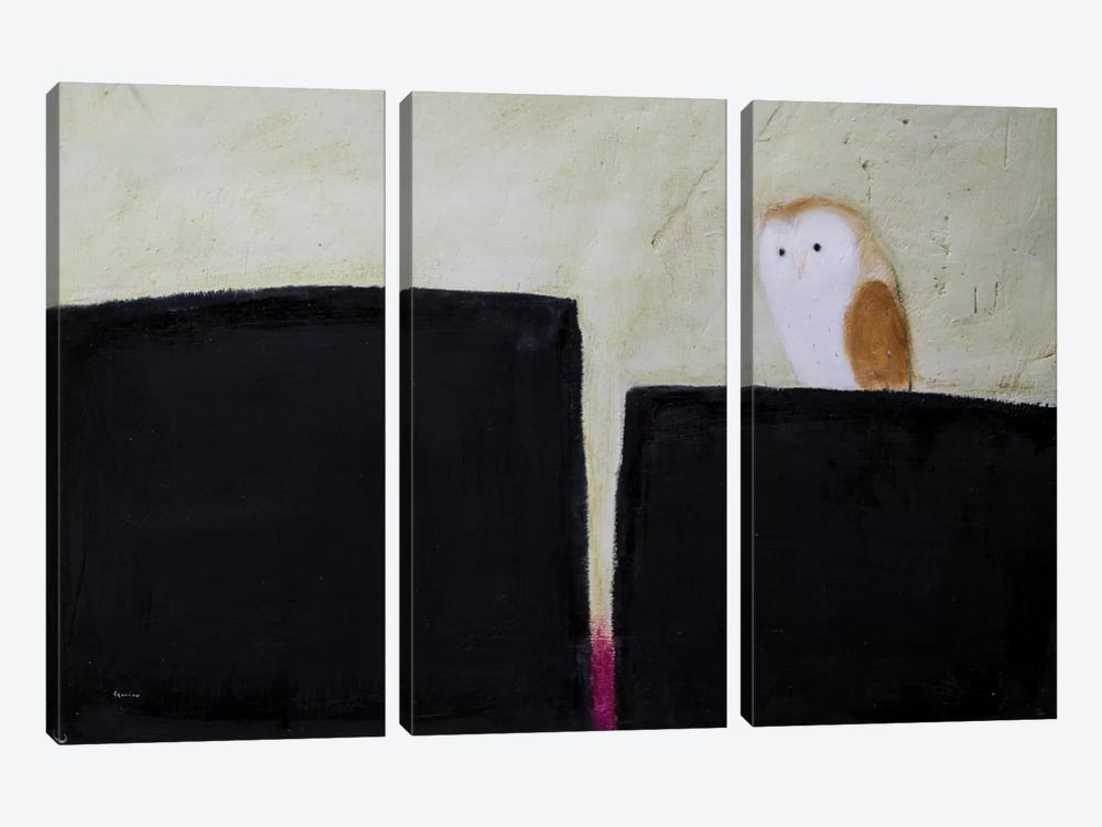 Owl On Black & Magenta by Andrew Squire 3-piece Canvas Artwork