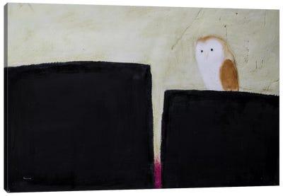 Owl On Black & Magenta Canvas Art Print