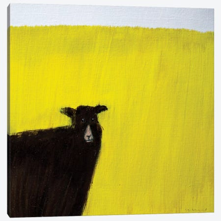 Another Goat Canvas Print #SQU1} by Andrew Squire Canvas Art Print
