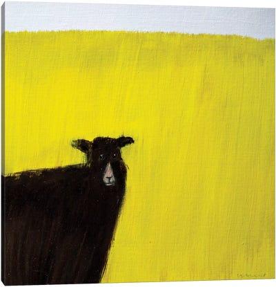 Another Goat Canvas Art Print