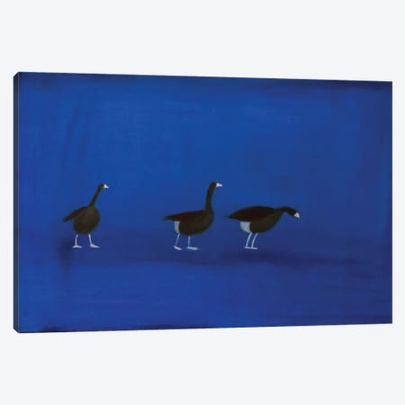 Three Geese Canvas Print #SQU24} by Andrew Squire Art Print