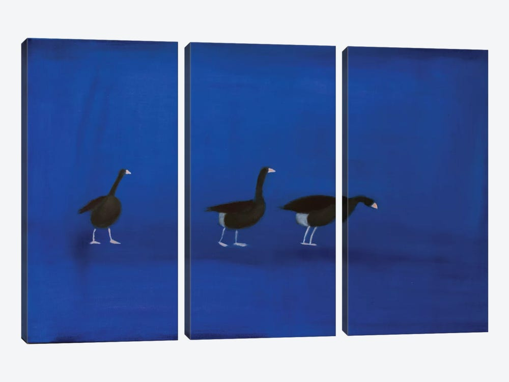 Three Geese by Andrew Squire 3-piece Art Print