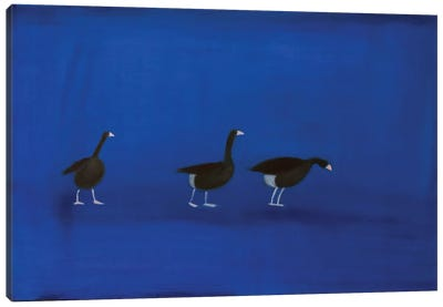 Three Geese Canvas Art Print