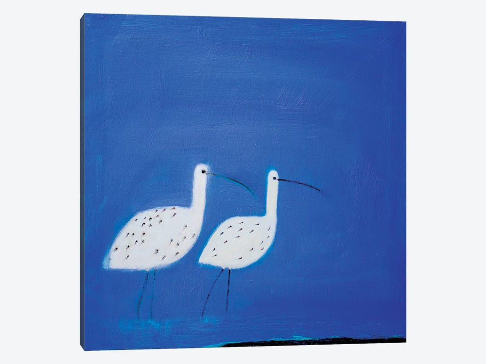Two Curlews by Andrew Squire 1-piece Canvas Art