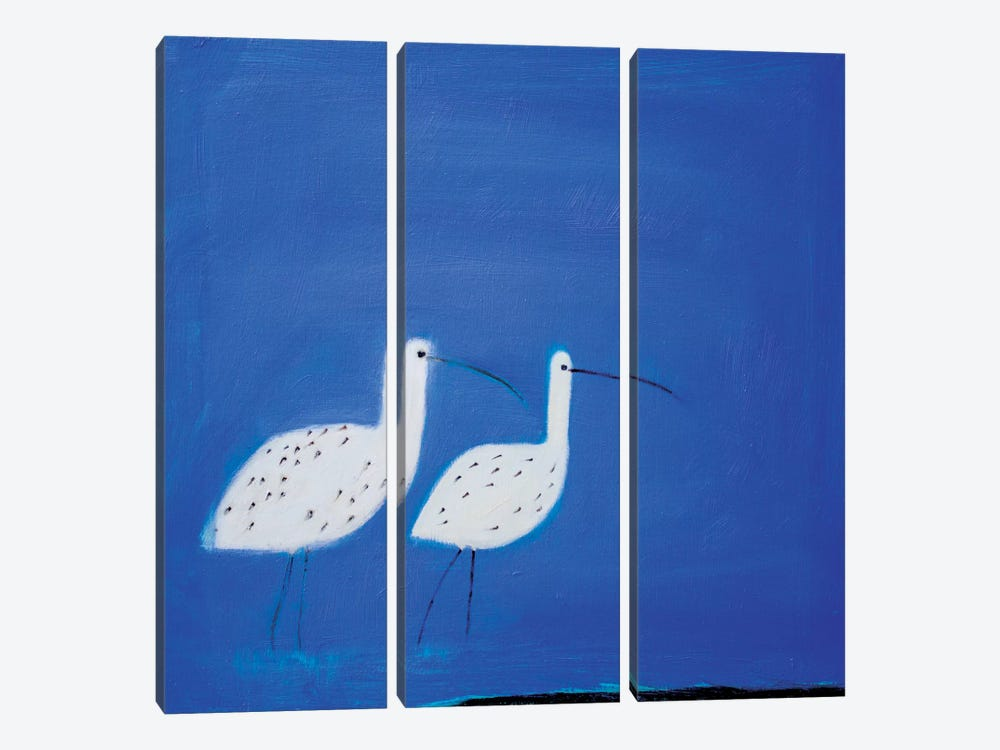 Two Curlews by Andrew Squire 3-piece Canvas Wall Art
