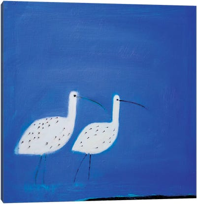 Two Curlews Canvas Art Print