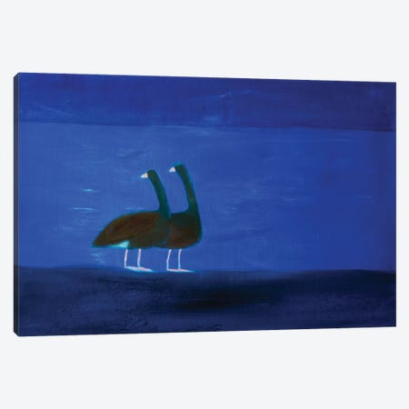 Two Geese Canvas Print #SQU27} by Andrew Squire Art Print