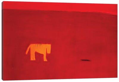 Beware Of The Tiger Canvas Print #SQU2