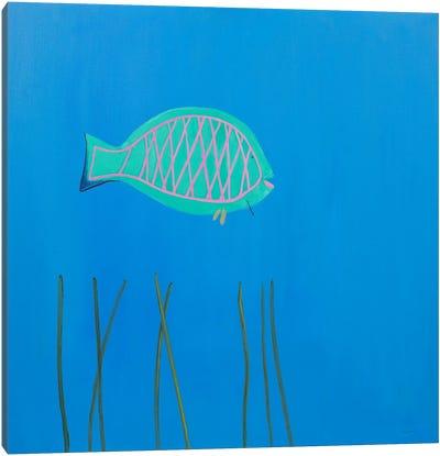 Parrot Fish Canvas Art Print