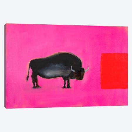 Bison Canvas Print #SQU36} by Andrew Squire Canvas Artwork