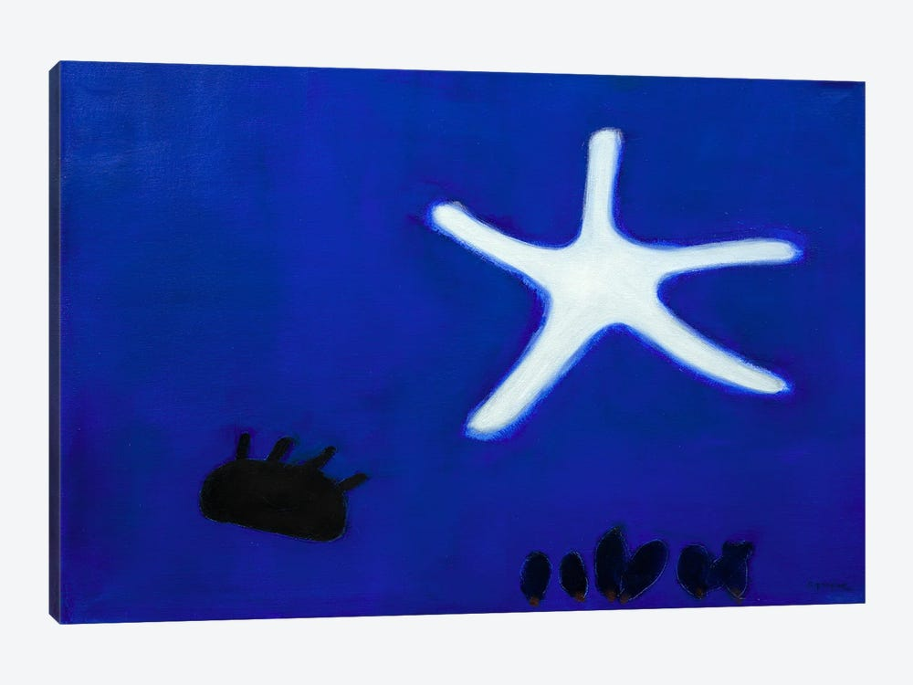 Starfish by Andrew Squire 1-piece Canvas Artwork