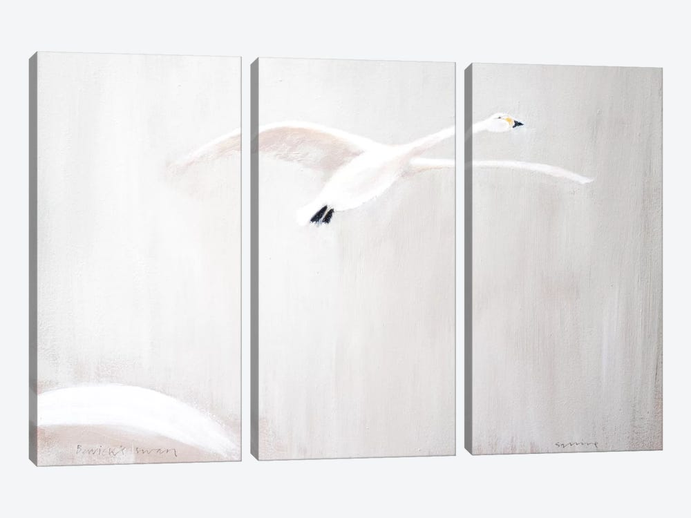 Bewick's Swan by Andrew Squire 3-piece Art Print