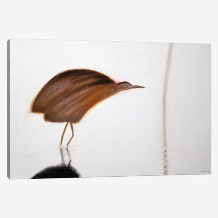 Bittern Canvas Print #SQU4} by Andrew Squire Canvas Wall Art