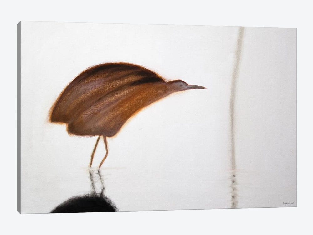 Bittern by Andrew Squire 1-piece Canvas Art