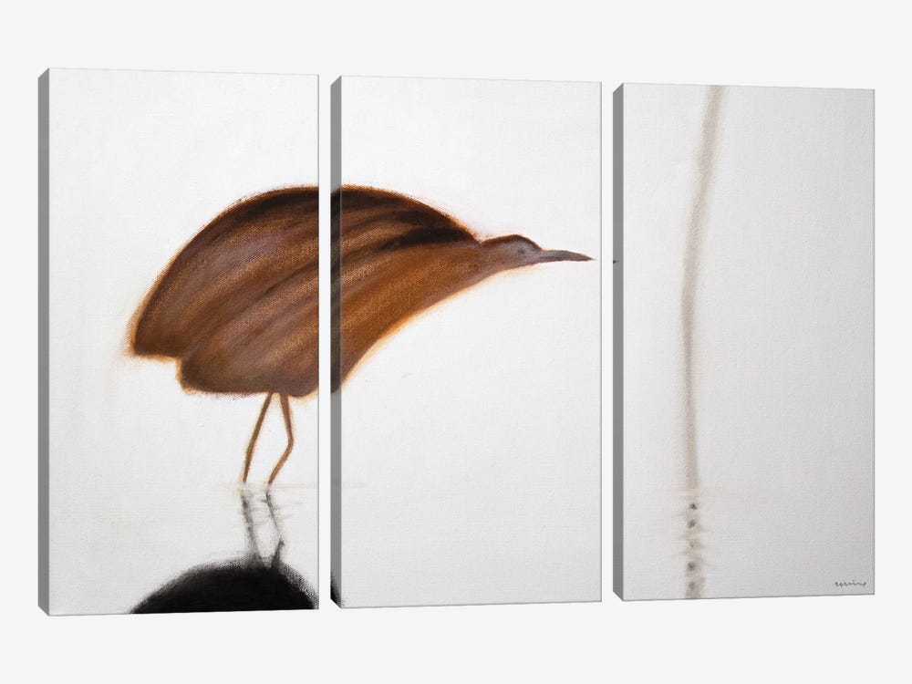 Bittern by Andrew Squire 3-piece Canvas Artwork