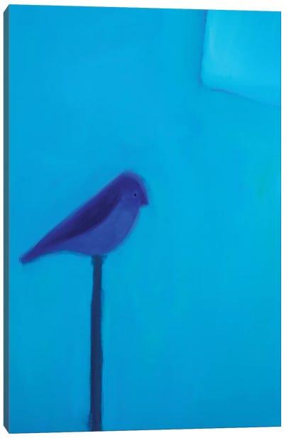 Blue Bird Canvas Print #SQU5