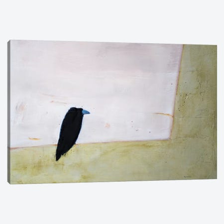 Crow Window Canvas Print #SQU9} by Andrew Squire Canvas Art Print