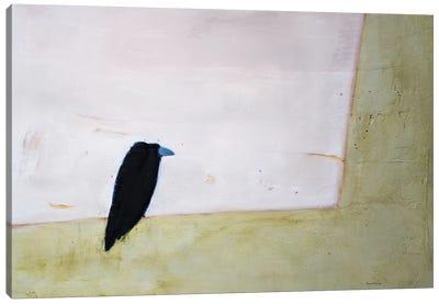 Crow Window Canvas Art Print