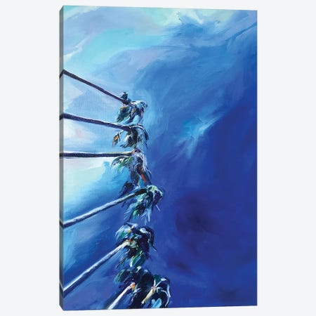 Miami Palms Canvas Print #SRB122} by Sasha Robinson Canvas Wall Art
