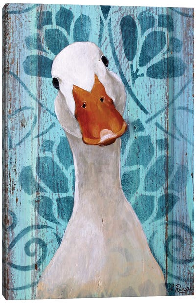 Farm Duck Canvas Art Print