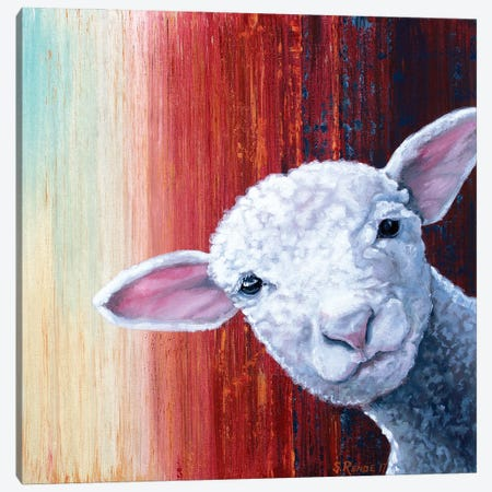 Lamb Canvas Print #SRD32} by Suzanne Rende Canvas Wall Art