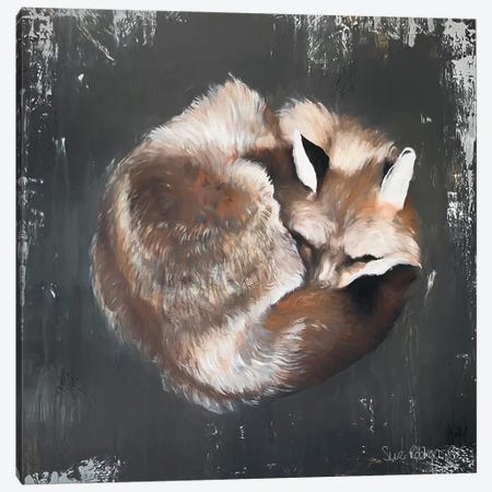 Sleeping Fox No. 11 Canvas Print #SRE10} by Suzi Redman Art Print