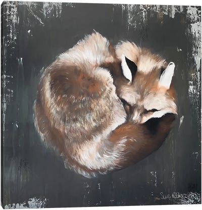 Sleeping Fox No. 11 Canvas Art Print