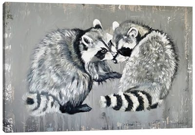 Two Raccoons Canvas Art Print