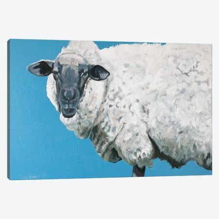 Wooly Sheep Canvas Print #SRE18} by Suzi Redman Art Print