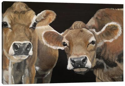 Hello There Cows Canvas Art Print