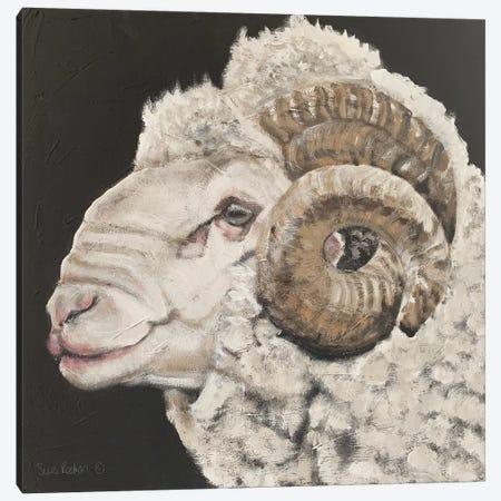 Portrait of a Ram Canvas Print #SRE21} by Suzi Redman Canvas Artwork