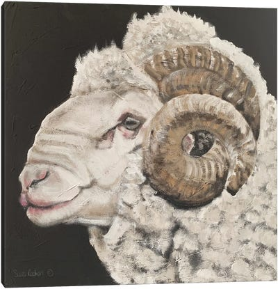 Portrait of a Ram Canvas Art Print