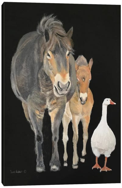 Farmyard Trio Canvas Art Print