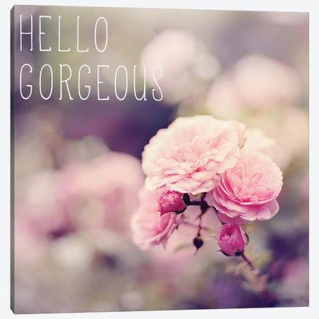 Hello Gorgeous Canvas Print #SRH23} by Sarah Gardner Canvas Print