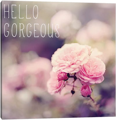 Hello Gorgeous Canvas Art Print