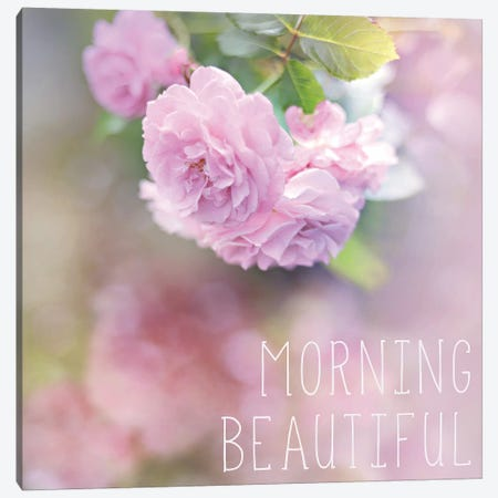 Morning Beautiful Canvas Print #SRH27} by Sarah Gardner Canvas Artwork