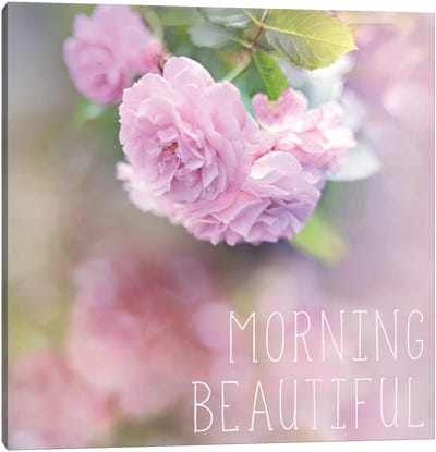 Morning Beautiful Canvas Art Print