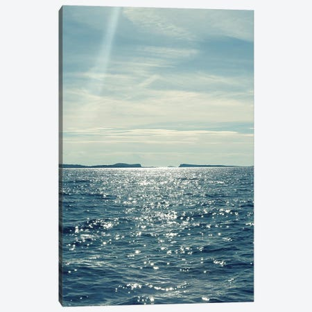 North Eastern Coastal I Canvas Print #SRH28} by Sarah Gardner Art Print