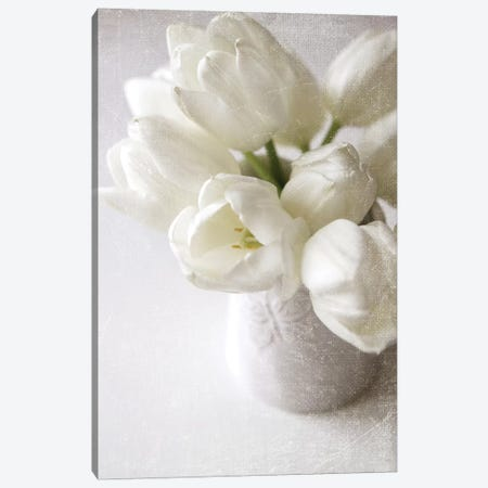 Vanishing In The White Elegance Canvas Print #SRH42} by Sarah Gardner Art Print