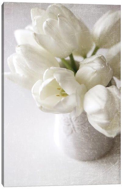 Vanishing In The White Elegance Canvas Art Print