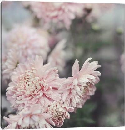 Evening Blooms Canvas Art Print