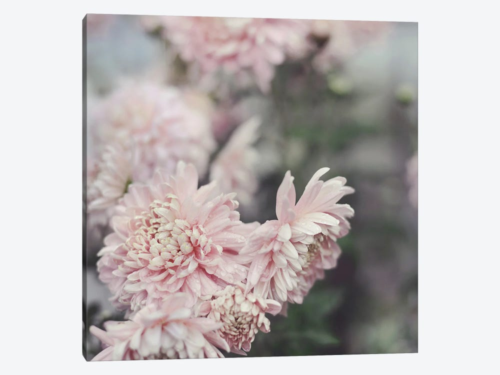 Evening Blooms by Sarah Gardner 1-piece Canvas Wall Art