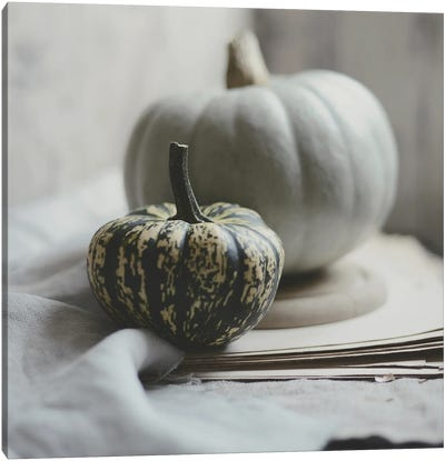 Fall Bunches Canvas Art Print