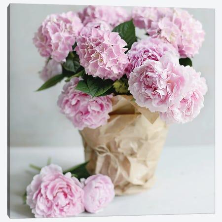 Pink Blooms Canvas Print #SRH62} by Sarah Gardner Canvas Art Print