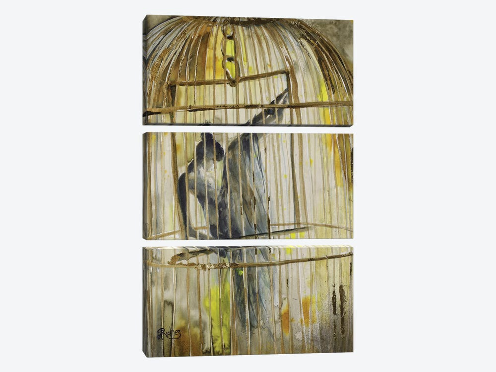 Caged by Sara Riches 3-piece Canvas Wall Art