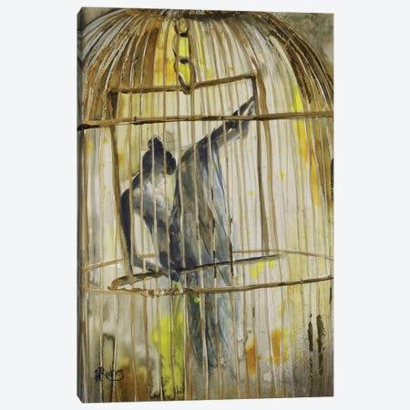 Caged Canvas Print #SRI11} by Sara Riches Canvas Art Print