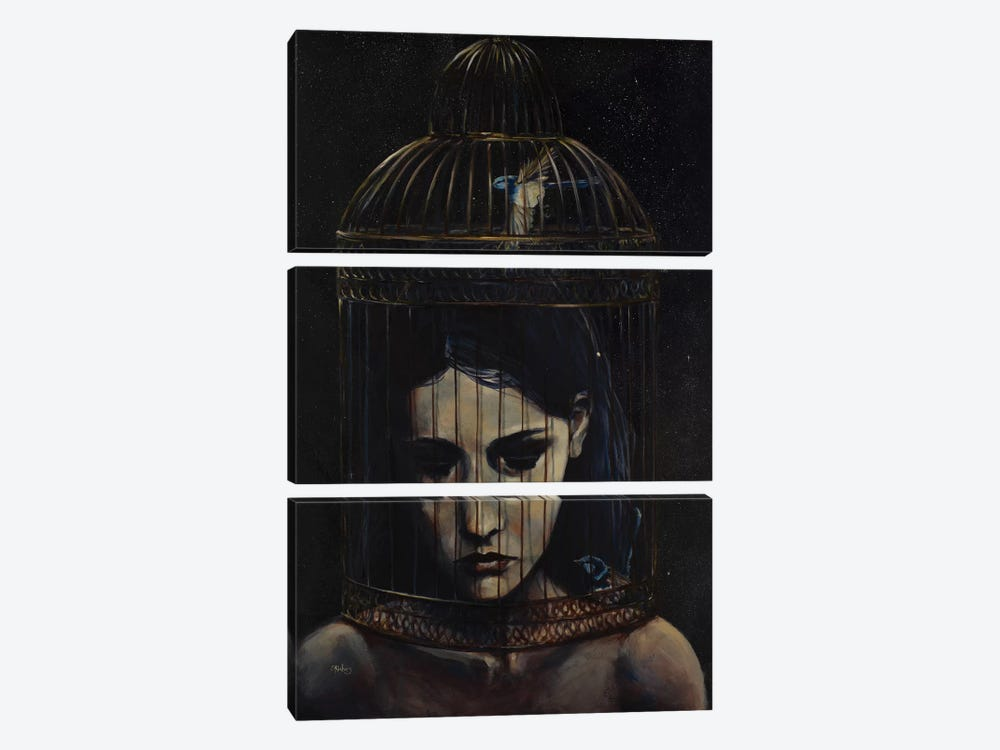 Gilded Cage by Sara Riches 3-piece Canvas Art Print