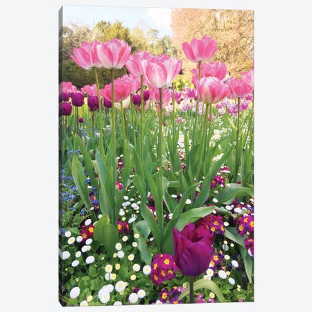 Spring Garden Canvas Print #SRJ6} by Sarah Jane Art Print